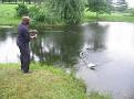 Fishing Sparks Md pond (39)