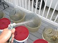 Rinsing the Demijohns.