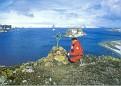Fildes Bay