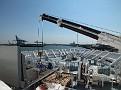 BALMORAL bow crane 20120527 004