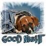 1Good Night-blujeanpup
