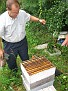 Jersey Cape Beekeepers Meeting for Aug 09  (32)