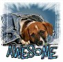 1Awesome-blujeanpup