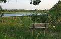 Early Evening Bench
