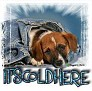 1It'sColdHere-blujeanpup-MC