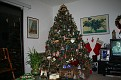 Our 2007 Christmas Tree  (2)