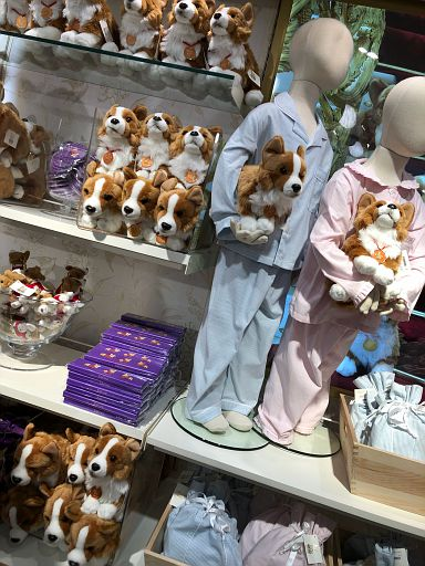 and more corgi swag