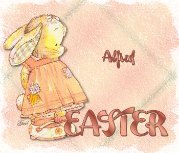 Alfred-gailz-sr waiting bunny