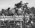 KALUBLU #2530 (*Nasr x Kedem) 1943 grey mare bred by Travelers Rest/General J. M. Dickinson