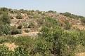 Malta North (15) Bingemma