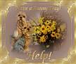 sunnyday-help
