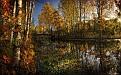 autumn-wallpaper-1920x1200-050