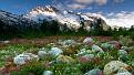 mountains-1600x900-059