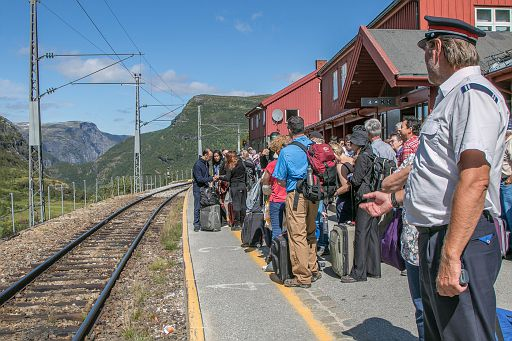 Passengers at Myrdal station